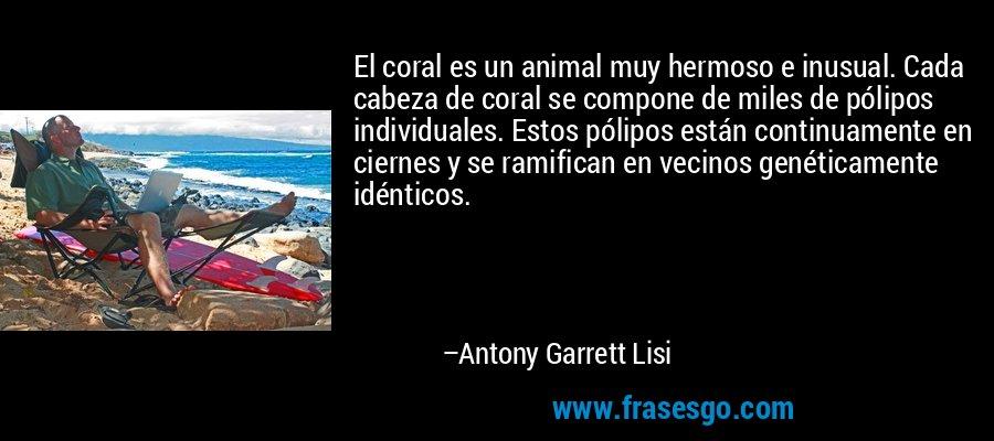 El coral es un animal muy hermoso e inusual. Cada cabeza de coral se compone de miles de pólipos individuales. Estos pólipos están continuamente en ciernes y se ramifican en vecinos genéticamente idénticos. – Antony Garrett Lisi