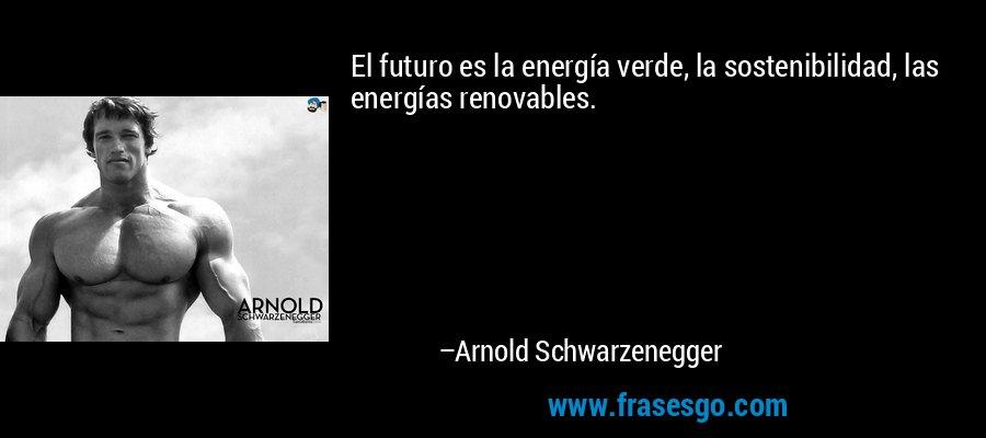 El futuro es la energía verde, la sostenibilidad, las energías renovables. – Arnold Schwarzenegger