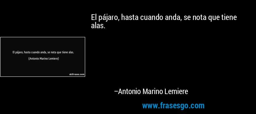 El pájaro, hasta cuando anda, se nota que tiene alas. – Antonio Marino Lemiere