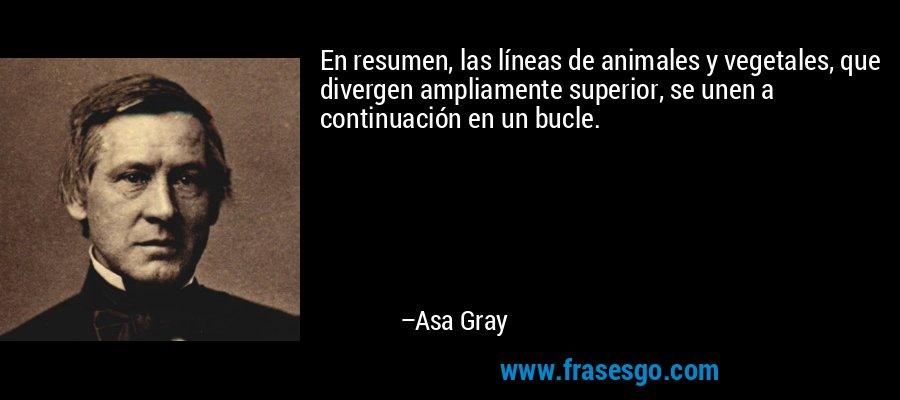 En resumen, las líneas de animales y vegetales, que divergen ampliamente superior, se unen a continuación en un bucle. – Asa Gray
