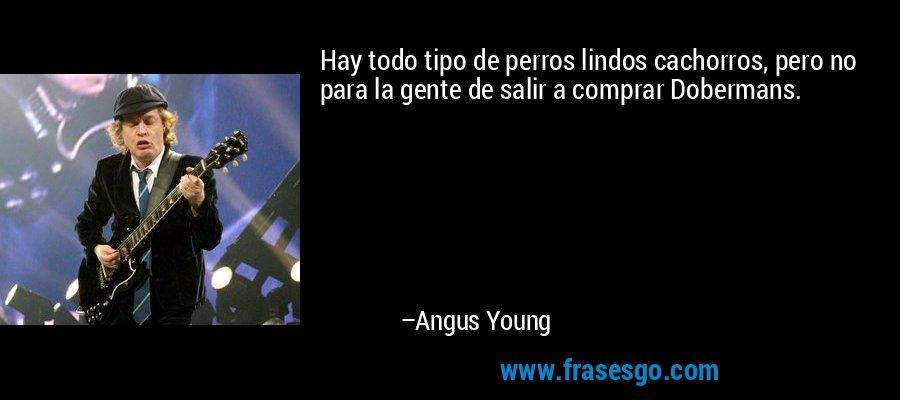 Hay todo tipo de perros lindos cachorros, pero no para la gente de salir a comprar Dobermans. – Angus Young
