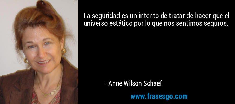 La seguridad es un intento de tratar de hacer que el universo estático por lo que nos sentimos seguros. – Anne Wilson Schaef