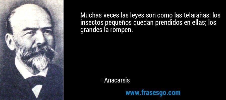 Muchas veces las leyes son como las telarañas: los insectos pequeños quedan prendidos en ellas; los grandes la rompen. – Anacarsis