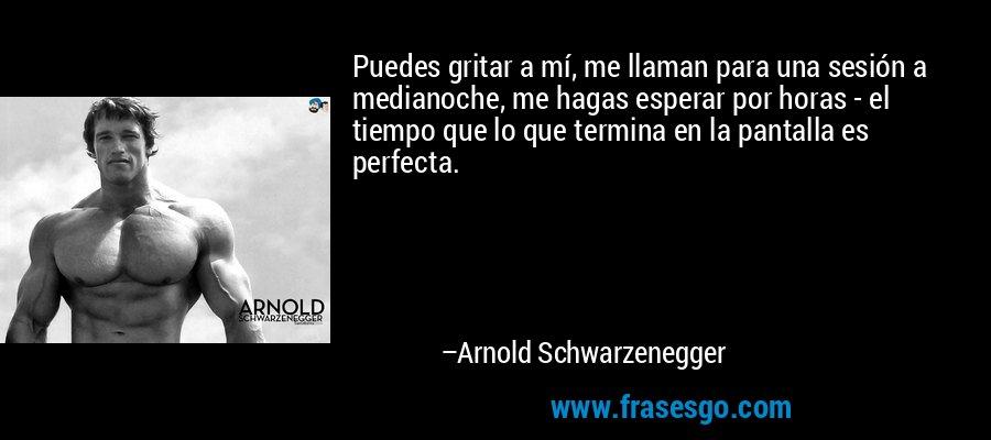 Puedes gritar a mí, me llaman para una sesión a medianoche, me hagas esperar por horas - el tiempo que lo que termina en la pantalla es perfecta. – Arnold Schwarzenegger