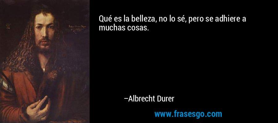 Qué es la belleza, no lo sé, pero se adhiere a muchas cosas. – Albrecht Durer