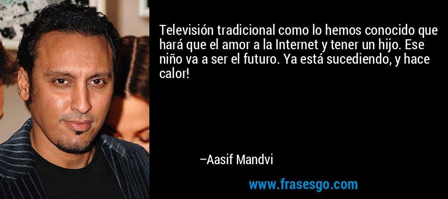 Televisión tradicional como lo hemos conocido que hará que el amor a la Internet y tener un hijo. Ese niño va a ser el futuro. Ya está sucediendo, y hace calor! – Aasif Mandvi