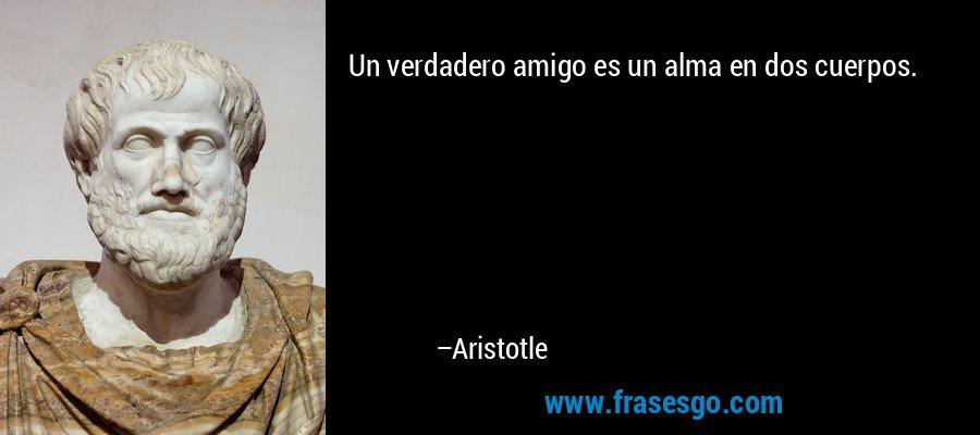 Un verdadero amigo es un alma en dos cuerpos. – Aristotle