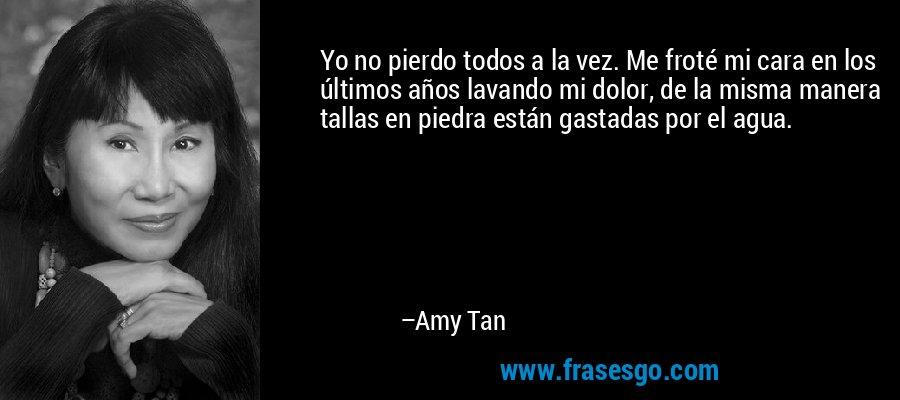 Yo no pierdo todos a la vez. Me froté mi cara en los últimos años lavando mi dolor, de la misma manera tallas en piedra están gastadas por el agua. – Amy Tan