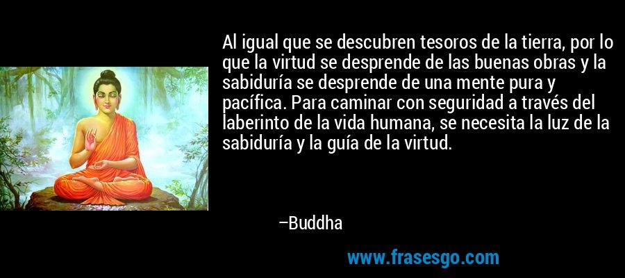 Al igual que se descubren tesoros de la tierra, por lo que la virtud se desprende de las buenas obras y la sabiduría se desprende de una mente pura y pacífica. Para caminar con seguridad a través del laberinto de la vida humana, se necesita la luz de la sabiduría y la guía de la virtud. – Buddha