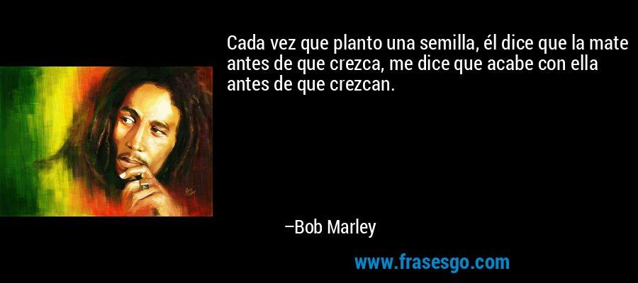 Cada vez que planto una semilla, él dice que la mate antes de que crezca, me dice que acabe con ella antes de que crezcan. – Bob Marley