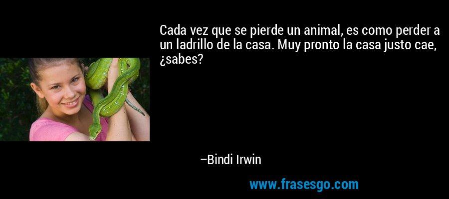 Cada vez que se pierde un animal, es como perder a un ladrillo de la casa. Muy pronto la casa justo cae, ¿sabes? – Bindi Irwin