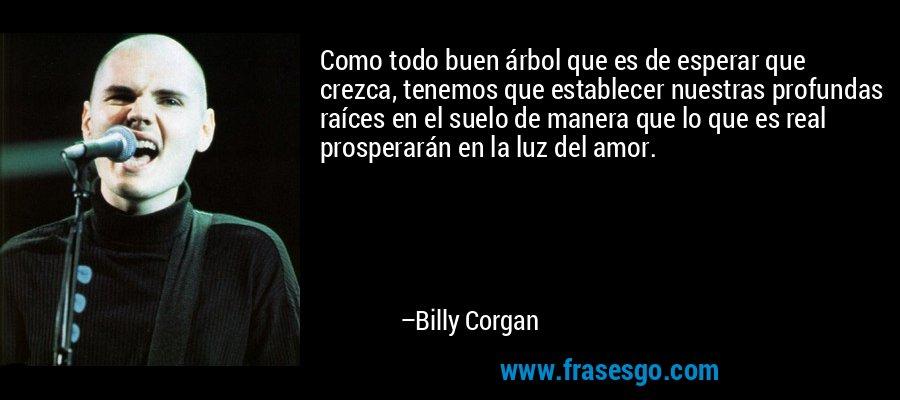 Como todo buen árbol que es de esperar que crezca, tenemos que establecer nuestras profundas raíces en el suelo de manera que lo que es real prosperarán en la luz del amor. – Billy Corgan