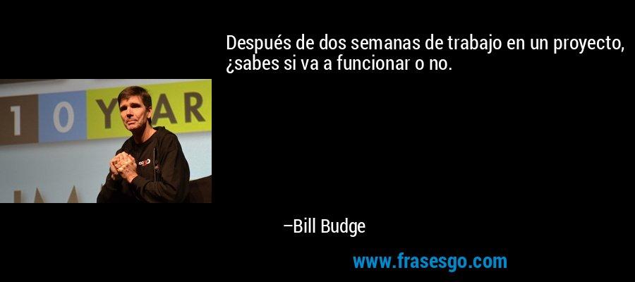 Después de dos semanas de trabajo en un proyecto, ¿sabes si va a funcionar o no. – Bill Budge