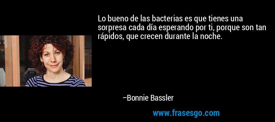 Lo bueno de las bacterias es que tienes una sorpresa cada día esperando por ti, porque son tan rápidos, que crecen durante la noche. – Bonnie Bassler