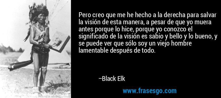 Pero creo que me he hecho a la derecha para salvar la visión de esta manera, a pesar de que yo muera antes porque lo hice, porque yo conozco el significado de la visión es sabio y bello y lo bueno, y se puede ver que sólo soy un viejo hombre lamentable después de todo. – Black Elk