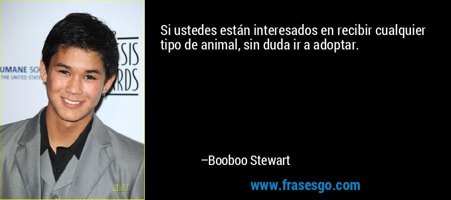 Si ustedes están interesados en recibir cualquier tipo de animal, sin duda ir a adoptar. – Booboo Stewart