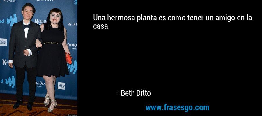 Una hermosa planta es como tener un amigo en la casa. – Beth Ditto