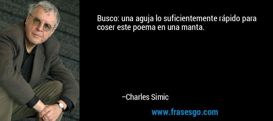Busco: una aguja lo suficientemente rápido para coser este poema en una manta. – Charles Simic