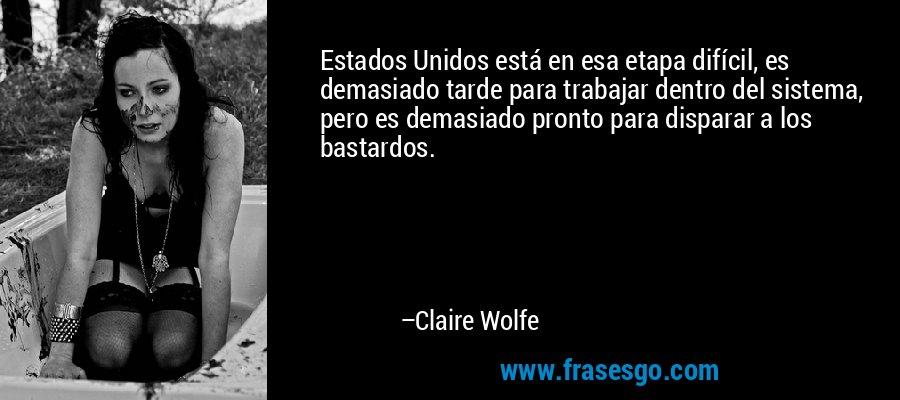 Estados Unidos está en esa etapa difícil, es demasiado tarde para trabajar dentro del sistema, pero es demasiado pronto para disparar a los bastardos. – Claire Wolfe