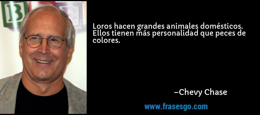 Loros hacen grandes animales domésticos. Ellos tienen más personalidad que peces de colores. – Chevy Chase
