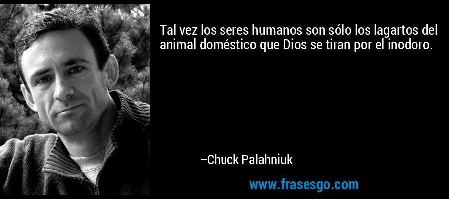 Tal vez los seres humanos son sólo los lagartos del animal doméstico que Dios se tiran por el inodoro. – Chuck Palahniuk
