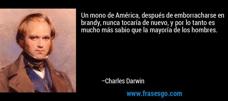 Un mono de América, después de emborracharse en brandy, nunca tocaría de nuevo, y por lo tanto es mucho más sabio que la mayoría de los hombres. – Charles Darwin