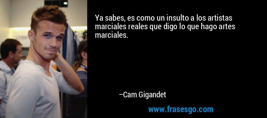 Ya sabes, es como un insulto a los artistas marciales reales que digo lo que hago artes marciales. – Cam Gigandet