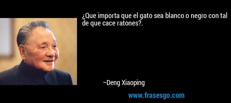 ¿Que importa que el gato sea blanco o negro con tal de que cace ratones?. – Deng Xiaoping