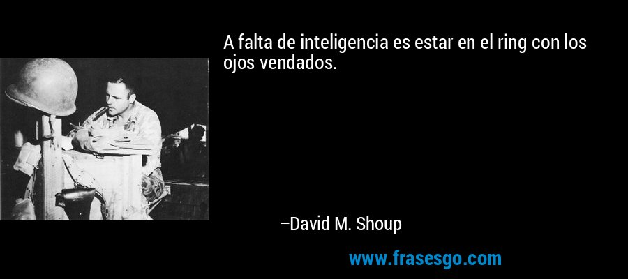 A falta de inteligencia es estar en el ring con los ojos vendados. – David M. Shoup