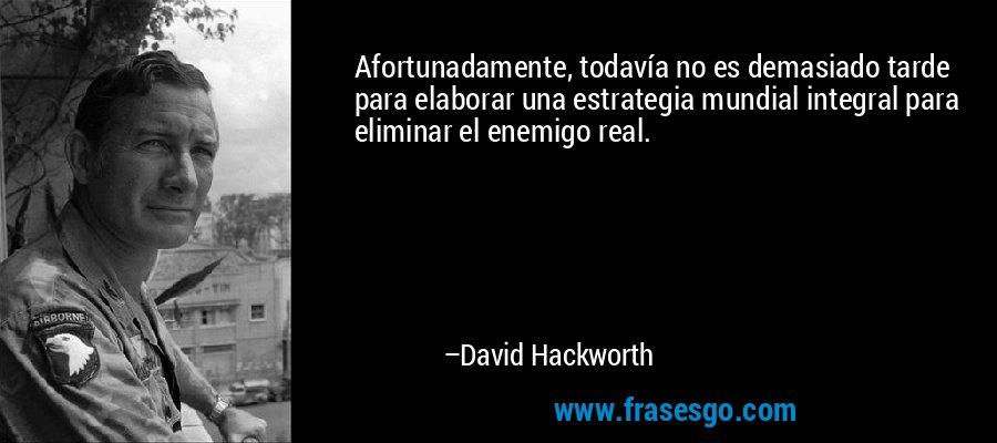 Afortunadamente, todavía no es demasiado tarde para elaborar una estrategia mundial integral para eliminar el enemigo real. – David Hackworth