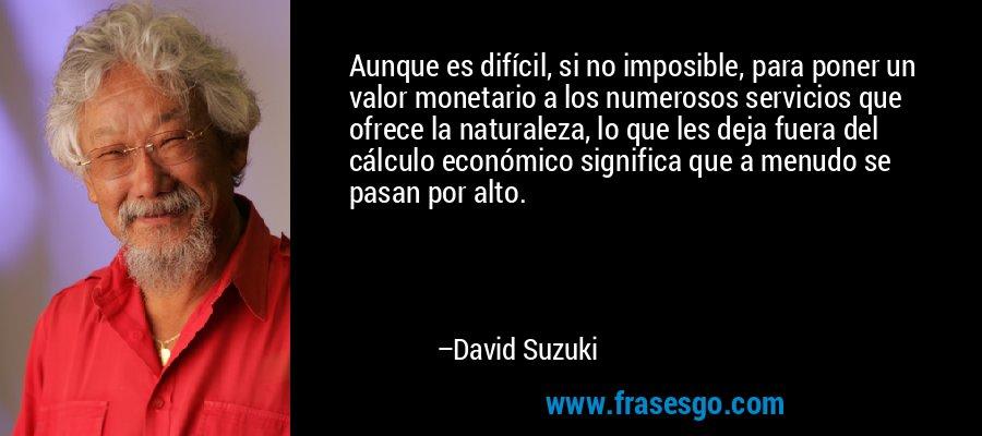 Aunque es difícil, si no imposible, para poner un valor monetario a los numerosos servicios que ofrece la naturaleza, lo que les deja fuera del cálculo económico significa que a menudo se pasan por alto. – David Suzuki