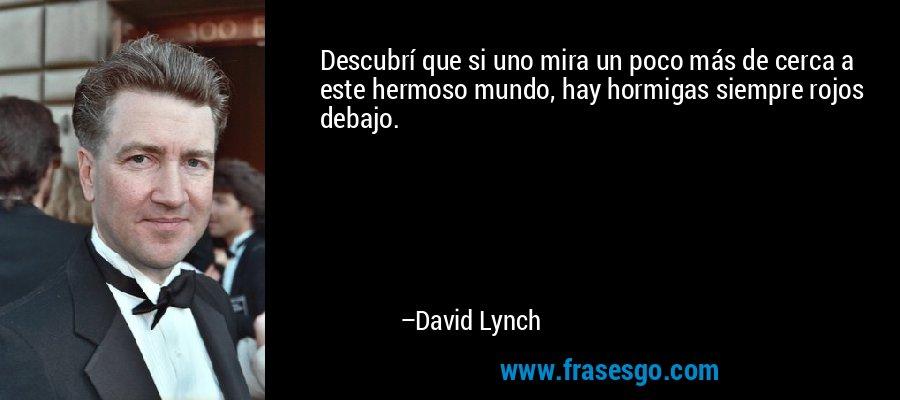 Descubrí que si uno mira un poco más de cerca a este hermoso mundo, hay hormigas siempre rojos debajo. – David Lynch