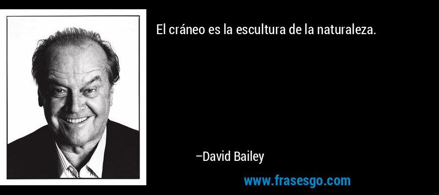 El cráneo es la escultura de la naturaleza. – David Bailey