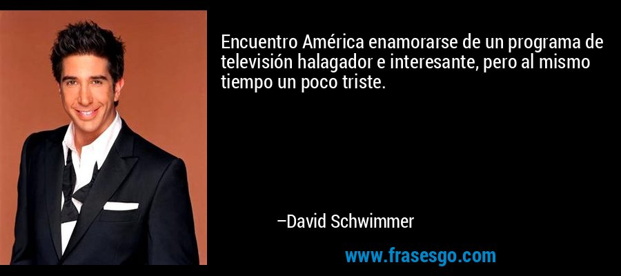 Encuentro América enamorarse de un programa de televisión halagador e interesante, pero al mismo tiempo un poco triste. – David Schwimmer