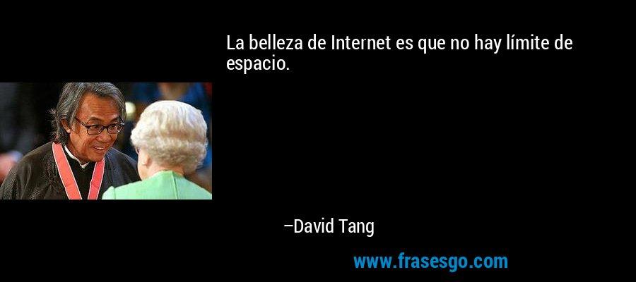La belleza de Internet es que no hay límite de espacio. – David Tang