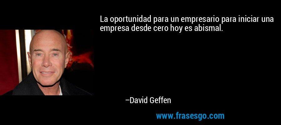 La oportunidad para un empresario para iniciar una empresa desde cero hoy es abismal. – David Geffen