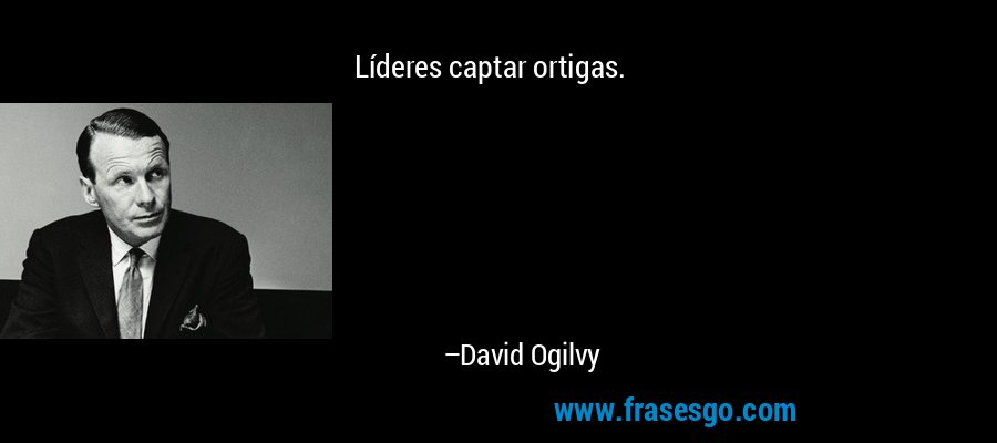 Líderes captar ortigas. – David Ogilvy