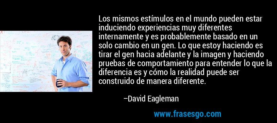 Los mismos estímulos en el mundo pueden estar induciendo experiencias muy diferentes internamente y es probablemente basado en un solo cambio en un gen. Lo que estoy haciendo es tirar el gen hacia adelante y la imagen y haciendo pruebas de comportamiento para entender lo que la diferencia es y cómo la realidad puede ser construido de manera diferente. – David Eagleman