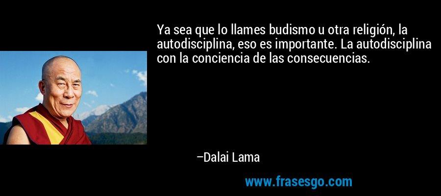 Ya sea que lo llames budismo u otra religión, la autodisciplina, eso es importante. La autodisciplina con la conciencia de las consecuencias. – Dalai Lama