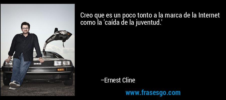 Creo que es un poco tonto a la marca de la Internet como la 'caída de la juventud.' – Ernest Cline