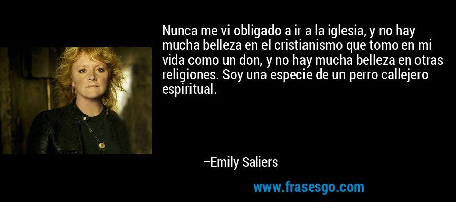 Nunca me vi obligado a ir a la iglesia, y no hay mucha belleza en el cristianismo que tomo en mi vida como un don, y no hay mucha belleza en otras religiones. Soy una especie de un perro callejero espiritual. – Emily Saliers
