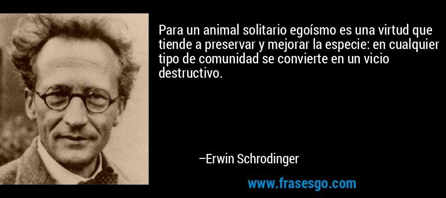 Para un animal solitario egoísmo es una virtud que tiende a preservar y mejorar la especie: en cualquier tipo de comunidad se convierte en un vicio destructivo. – Erwin Schrodinger