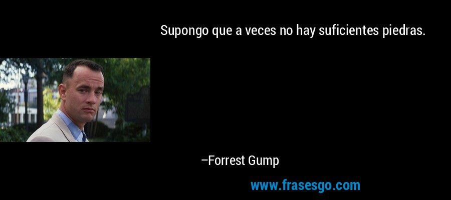 Supongo que a veces no hay suficientes piedras. – Forrest Gump