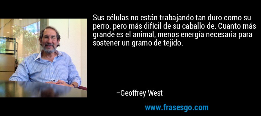 Sus células no están trabajando tan duro como su perro, pero más difícil de su caballo de. Cuanto más grande es el animal, menos energía necesaria para sostener un gramo de tejido. – Geoffrey West