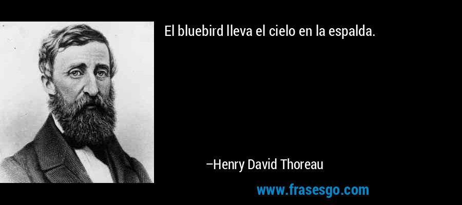 El bluebird lleva el cielo en la espalda. – Henry David Thoreau