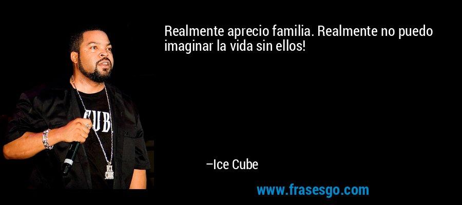 Realmente aprecio familia. Realmente no puedo imaginar la vida sin ellos! – Ice Cube