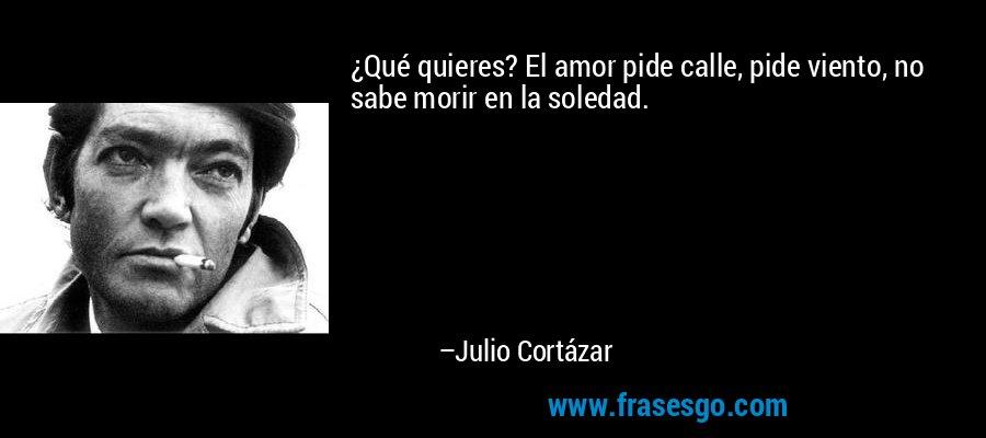 ¿Qué quieres? El amor pide calle, pide viento, no sabe morir en la soledad. – Julio Cortázar