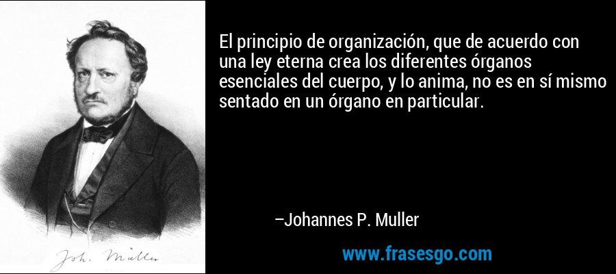 El principio de organización, que de acuerdo con una ley eterna crea los diferentes órganos esenciales del cuerpo, y lo anima, no es en sí mismo sentado en un órgano en particular. – Johannes P. Muller