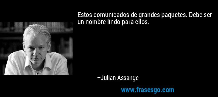Estos comunicados de grandes paquetes. Debe ser un nombre lindo para ellos. – Julian Assange