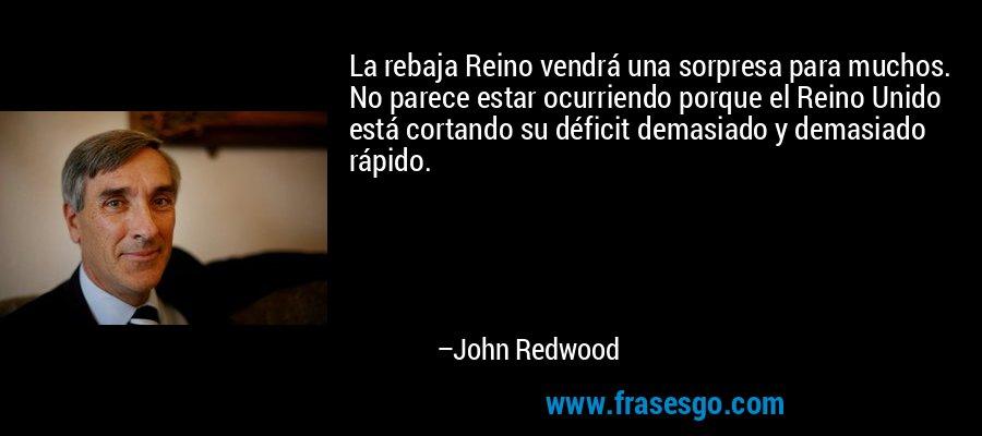 La rebaja Reino vendrá una sorpresa para muchos. No parece estar ocurriendo porque el Reino Unido está cortando su déficit demasiado y demasiado rápido. – John Redwood